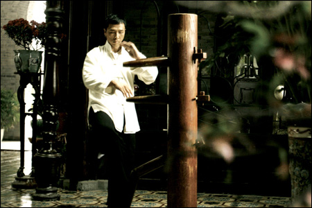 Donnie yen wooden dummy